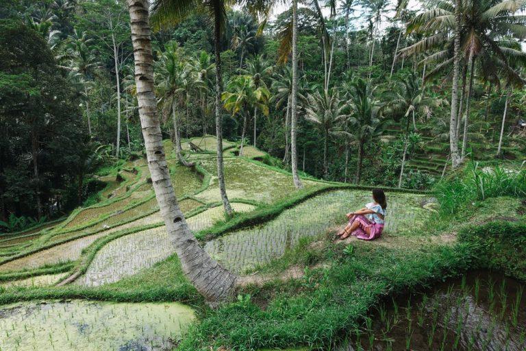 Cosmétique riz femme